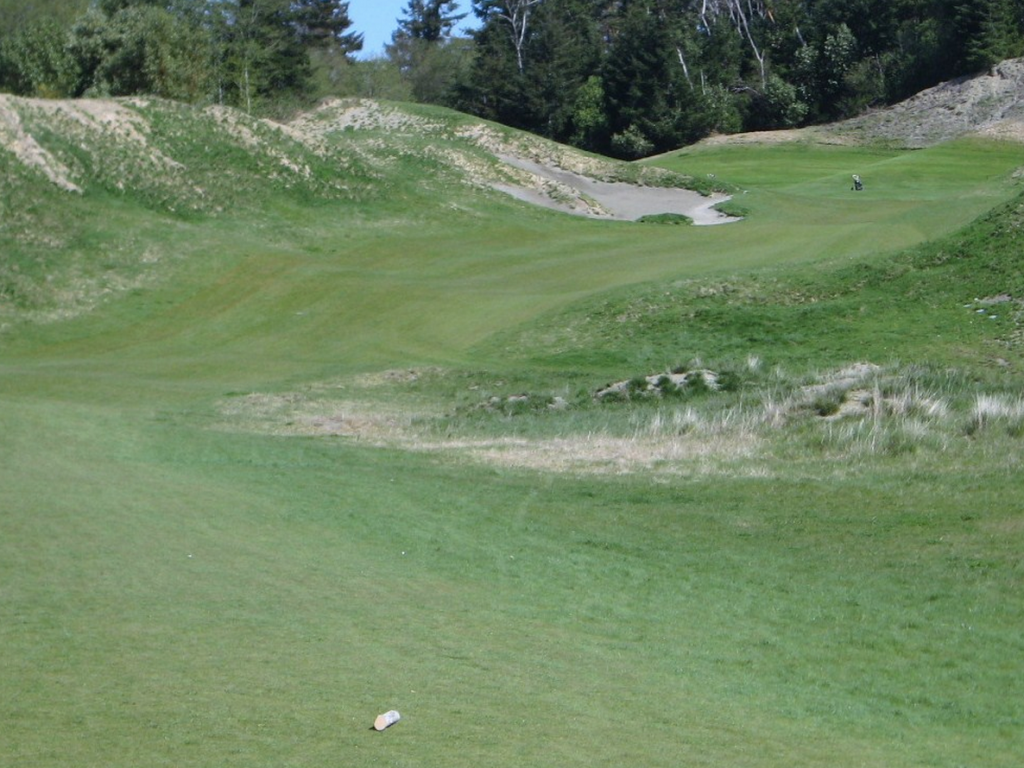 chambers-bay-drivable-par-4