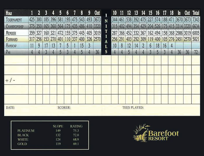 Barefoot_Dye_Scorecard